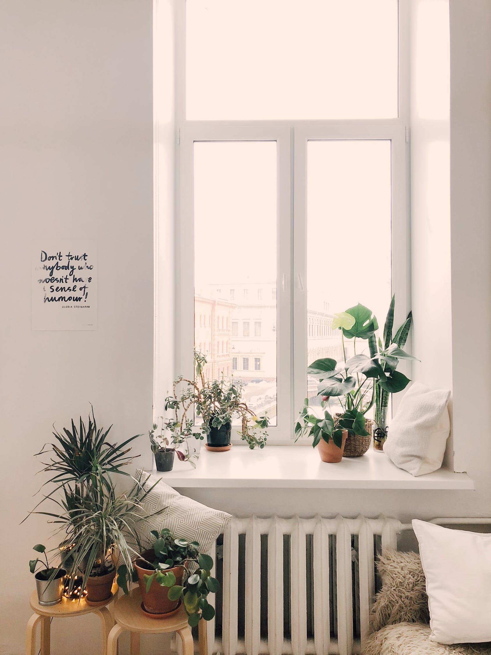 Morar sozinho: itens essenciais para ter em seu apartamento